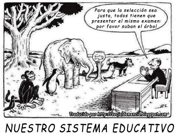 Ley de atraccion Nuestro-sistema-educativo